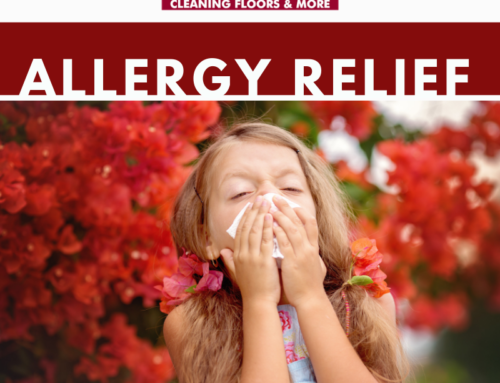 How Can You Reduce Allergens?